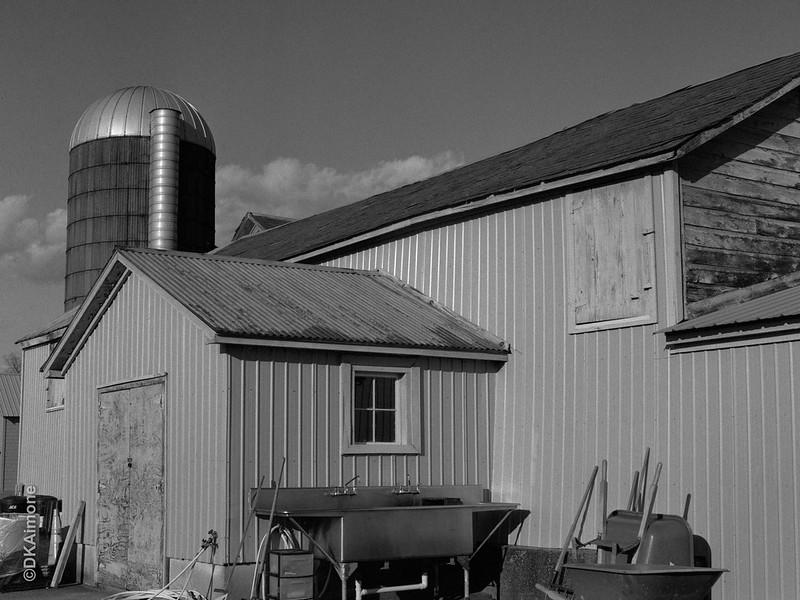 Pitney Community Farm 1