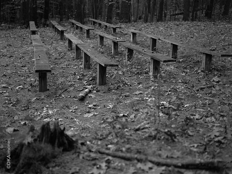 Woodland Pews