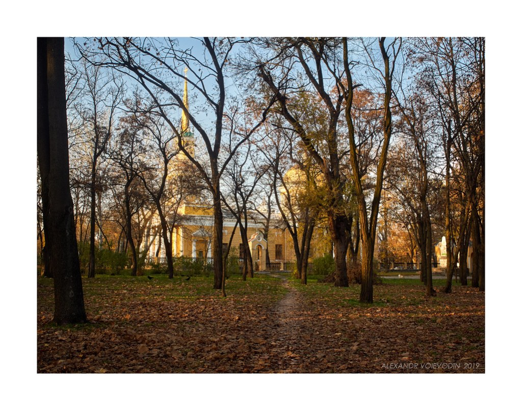 November evening (I)