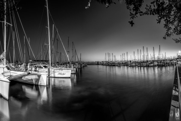 Marina at dawn
