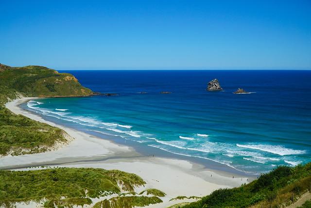 New Zealand, Sandfly Beach, Otago Peninsula.