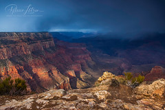 Yaki Point Snow Storm