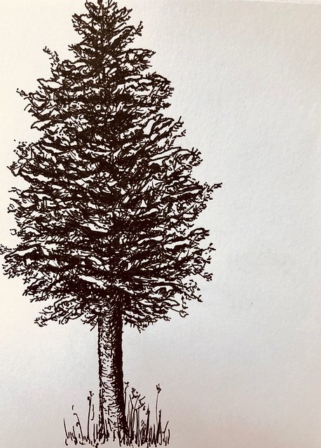 Tree in ink