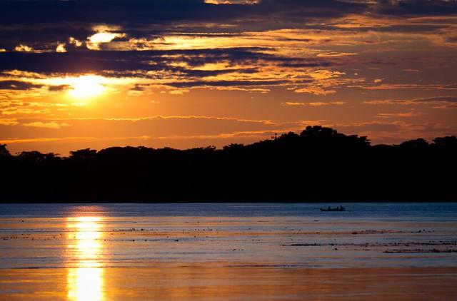Pacaya Samiria National Reserve_Renzo Tasso