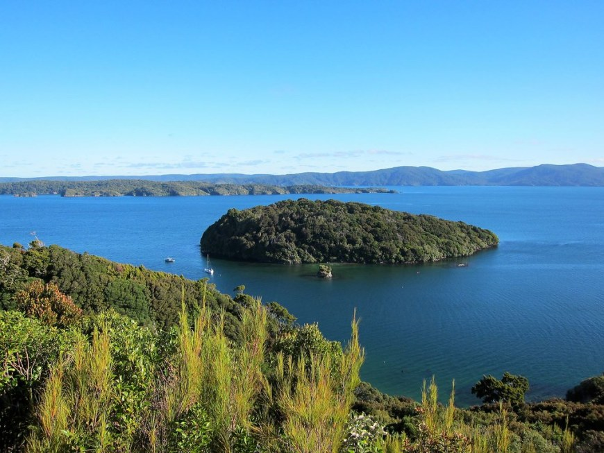 A very blue lake with an island covered with a dense forest in the middle