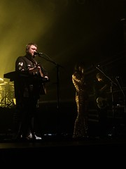 49129560162 4682aa77a9 m - Of Monsters & Men