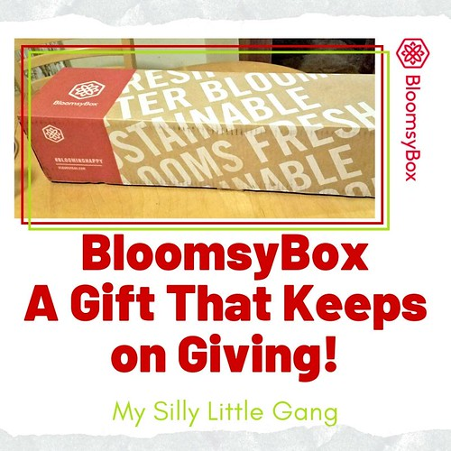 BloomsyBox ~ A Gift That Keeps on Giving! @BloomsyBox #FreshFlowers #MySillyLittleGang