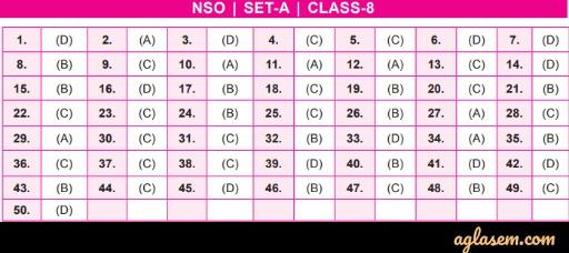 NSO 2019 Class 8 Answer Key