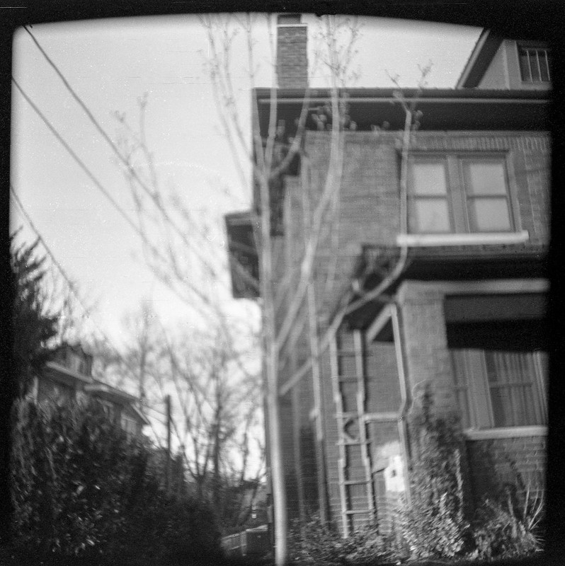 residential architecture, powerlines, Haywood Road, West Asheville, NC, Universal Meteor 620 camera, Fomapan 200, Moersch Eco developer, 12.9.19