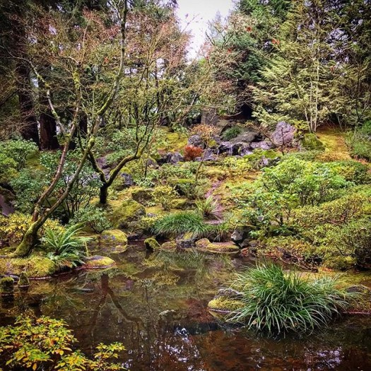 @portlandjapanesegarden in the rain #exploreoregon @travelportland #pdx #portlandjapanesegarden #explorepdx