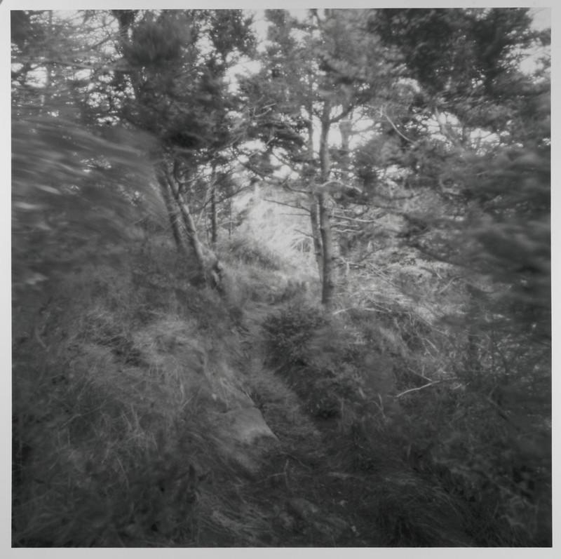 Monhegan Trail, Pinhole