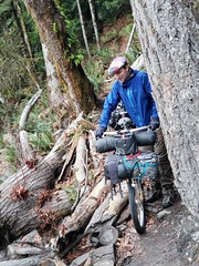 Olympic national park, bypass trail.