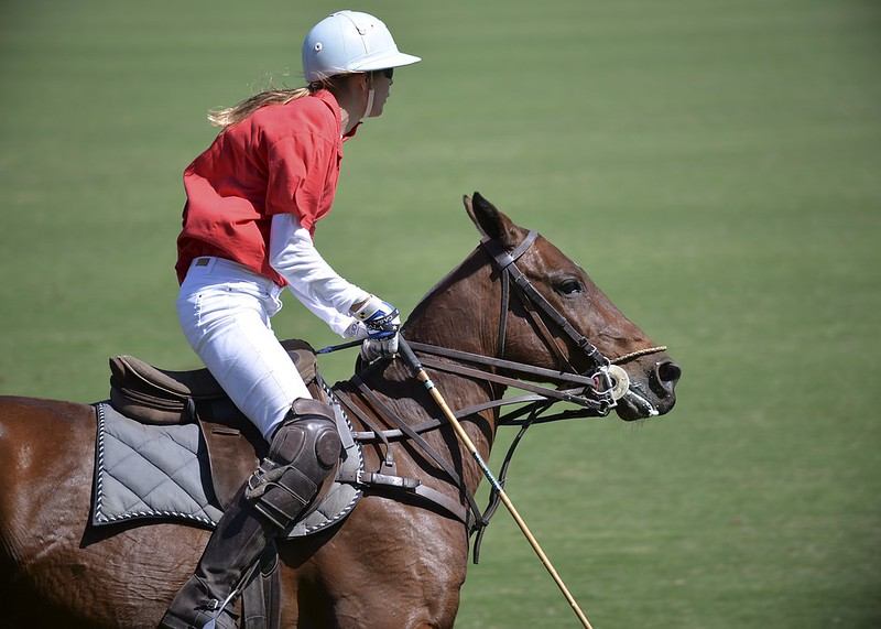 The Polo Diaries
