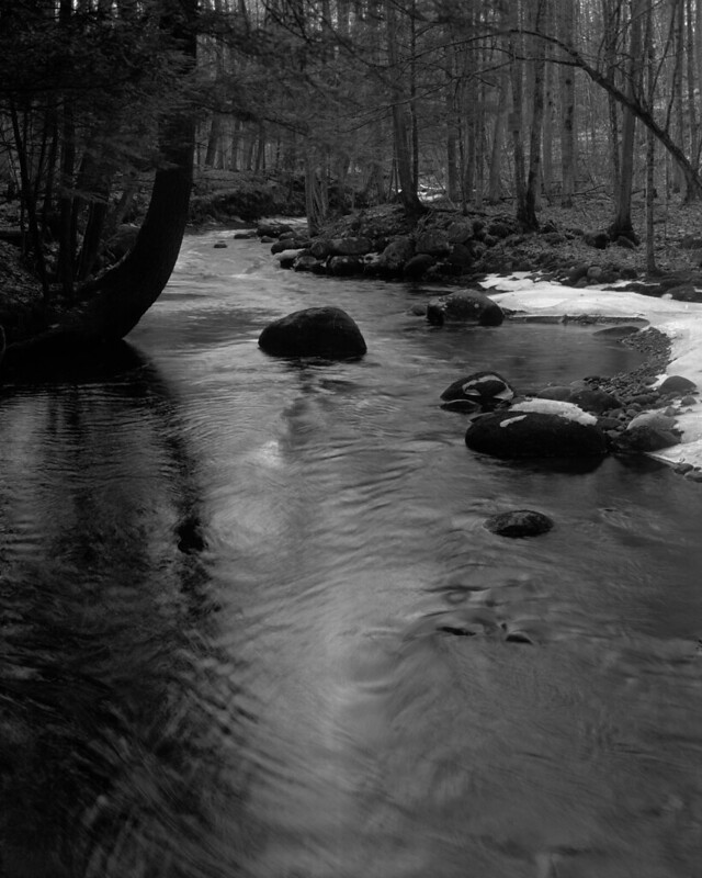 Creek Late Afternoon