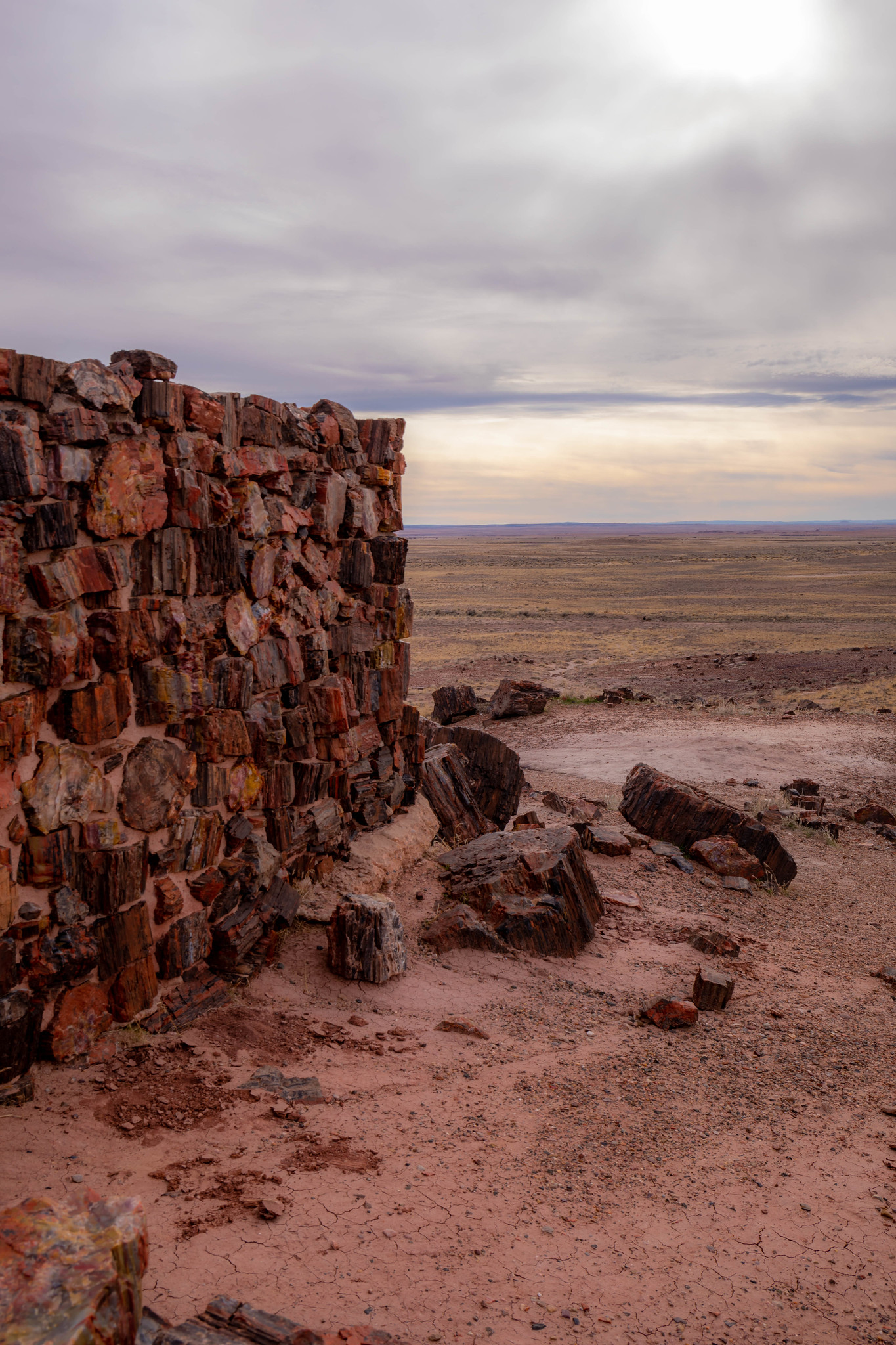 12.22. Petrified Forest National Park