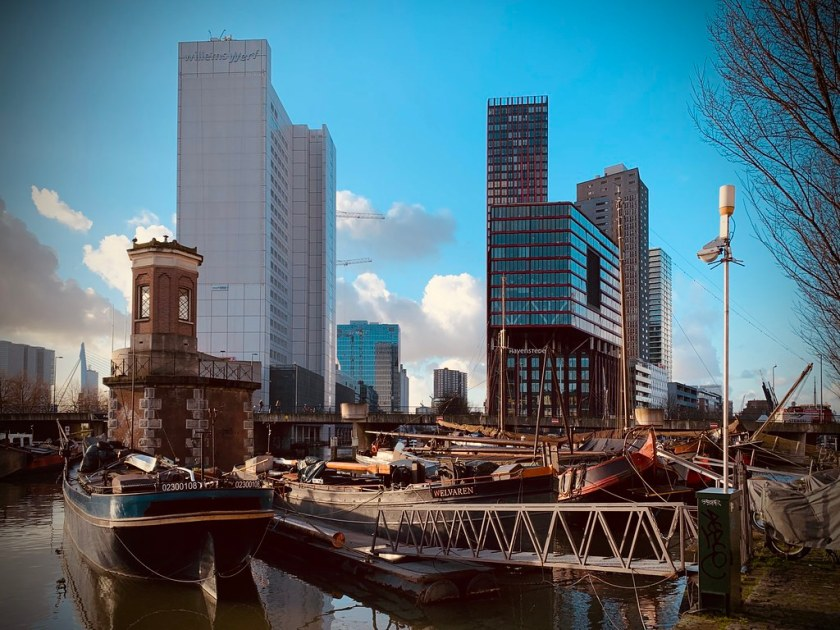 Rotterdam Daily Photo: Light shows a contrast