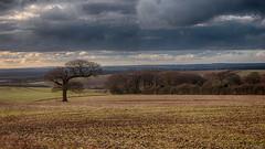 ladle hill