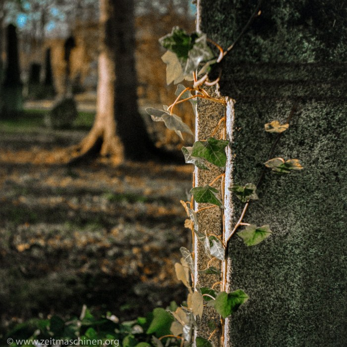 Winterfriedhof 2/ Winter Graveyard 2