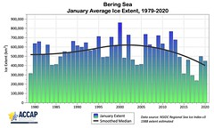 Bering_January