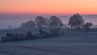 *Ein kalter Februarmorgen im Wittlicher Tal*