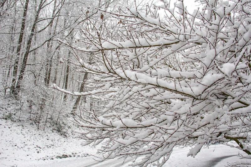 Snow Day18