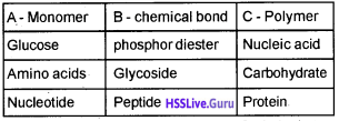 Plus One Zoology Chapter Wise Questions and Answers Chapter 4 Biomolecules 1