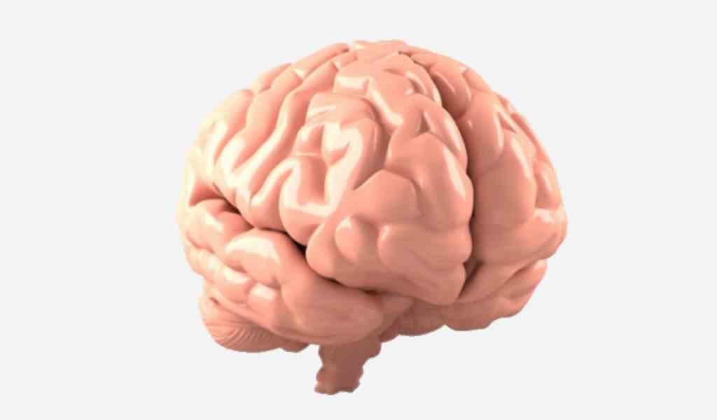 une-petite-molécule-contre-la-maladie-de-Parkinson