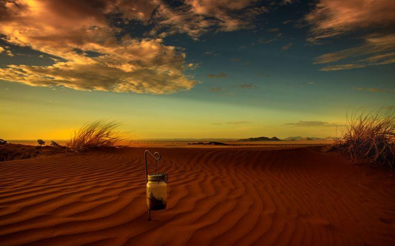 View - Namib Dune Star Camp