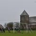 North Petherwin 5, Delabole United 0, Duchy League Division 3, February 2020