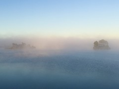 54/366 Sunday morning mist on the mighty Murray River.
