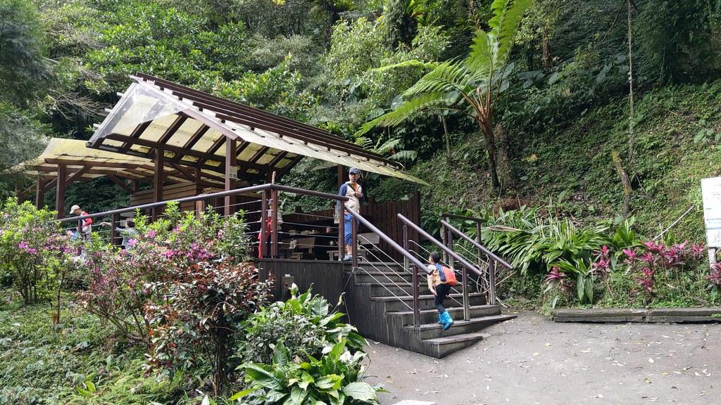 「登山Let's Go」開學前的健行大挑戰@聖母山莊步道上三角崙山 @ 雪人&小惡魔們在身邊 :: 痞客邦