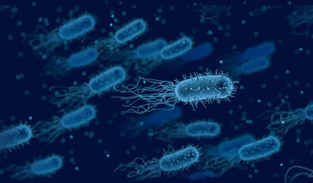 les-futurs-antibiotiques-pourraient-contenir-des-métaux