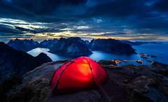 Good Night Lofoten