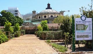 Vegetable Garden - Company Gardens