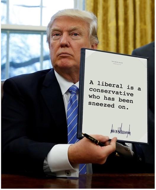 Trump_sneezedon