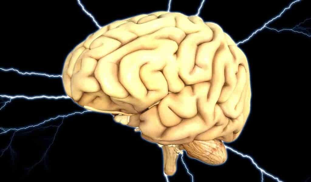 Inflammatio-du-cerveau-lié-à-plusieurs-formes-de-démence