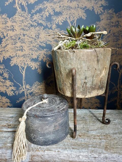 Voorjaarsbollen met mos in landelijke pot