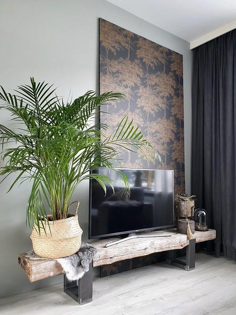 Tv meubel biels landelijk plant in zeegras mand