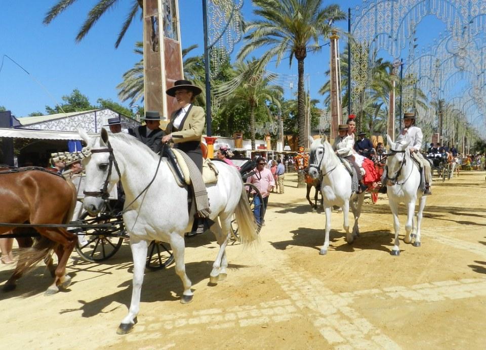 desfile caballo blanco y jinete Parque González Hontoria Feria del Caballo 2014 Jerez de la Frontera Cadiz 03