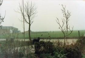 1987-xx-xx - Diversen voor Kees in Nieuw-Zeeland - 002