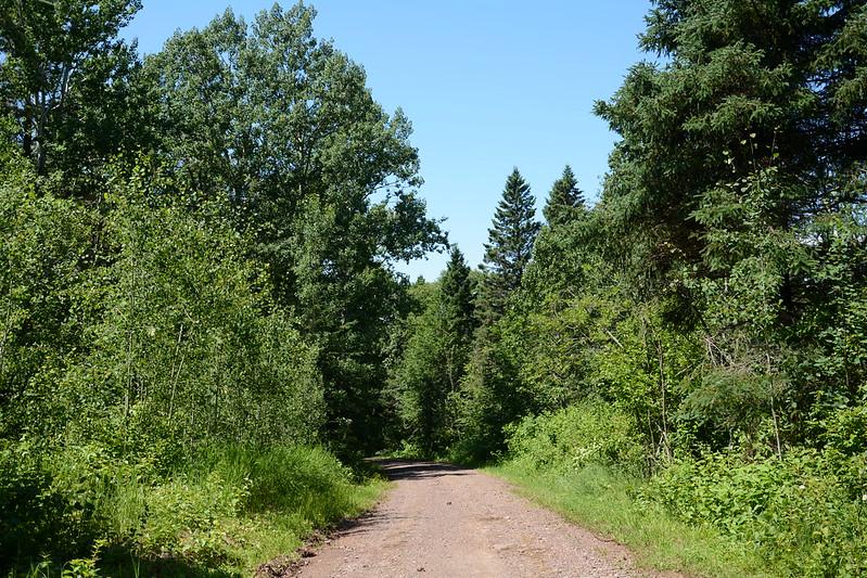 Trail near Windigo