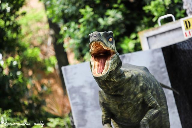 Jurassic World 2018 Velociraptors