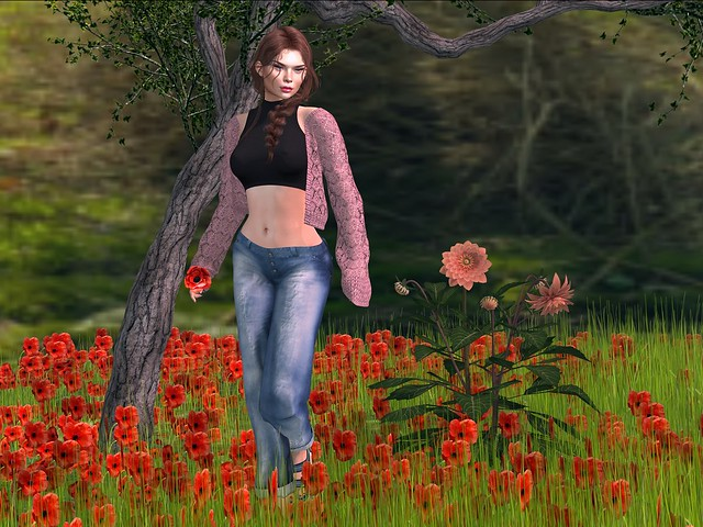 Spring World