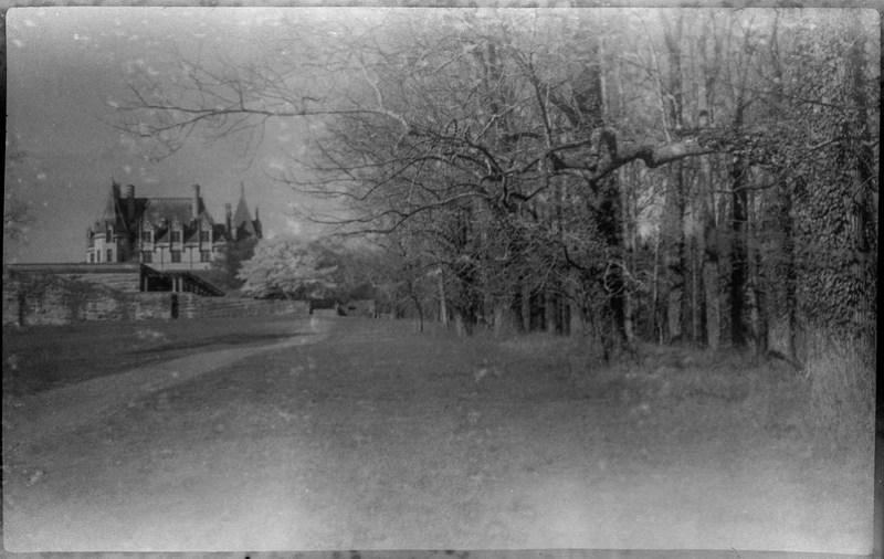 forest's edge, dirt pathway, mansion, Biltmore Estate, Asheville, NC, Kochmann Korelle folding camera, Rera Pan 100S, HC-110 developer, late March, 2020