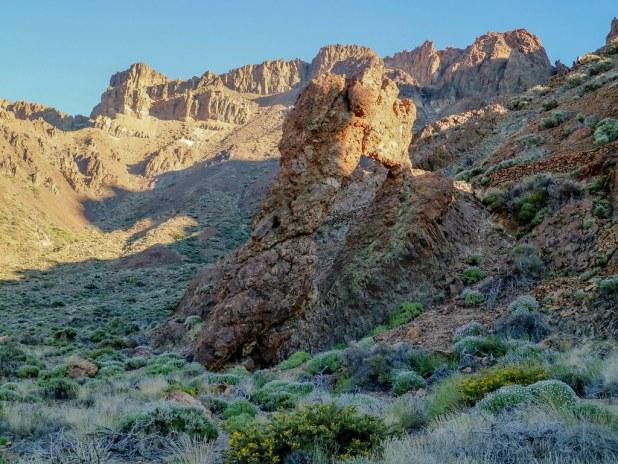 Zapatilla de la Reina en el Parque Nacional del Teide