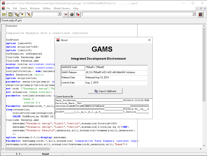 Working with GAMS 28.2.0 full license