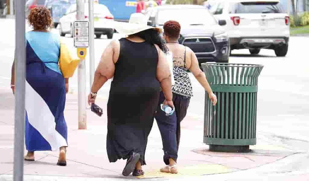 les-ovocytes-des-femmes-obèses-ont-une-composition-différente