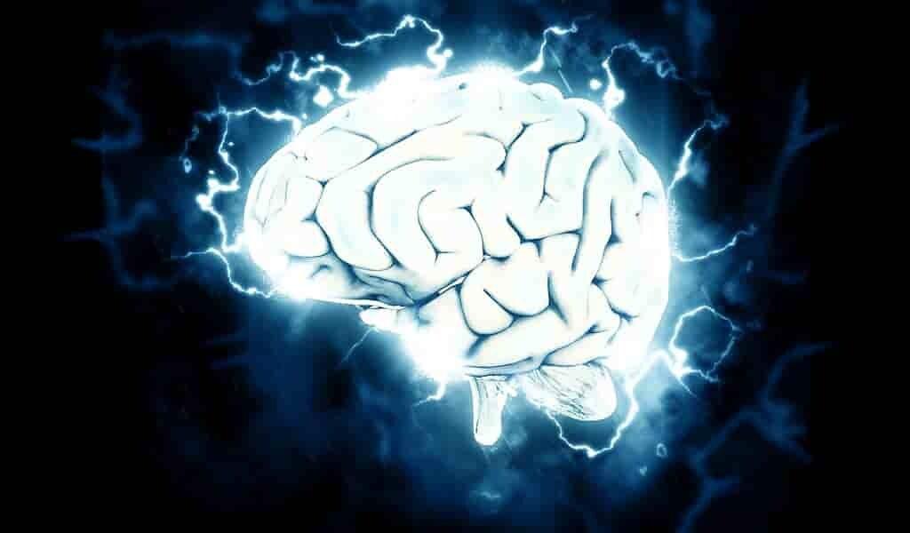 les-quasi-centenaires-ont-une-connectivité-cérébrales-différente