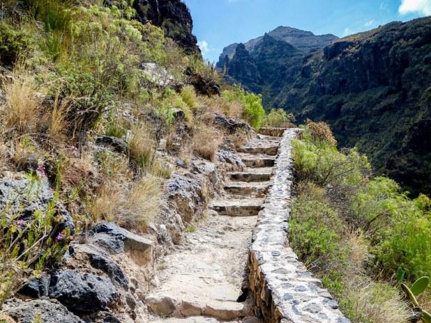 Sendero del Barranco Infierno en Tenerife