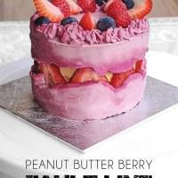 Peanut Butter Berry Fault Line Cake (Vegan, Gluten Free)